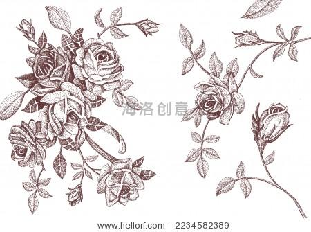 玫瑰 手绘 eps - 背景/素材 - 站酷海洛创意正版图片