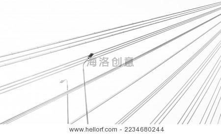 建筑 桥梁 钢索 路灯 黑白 抽象 线条 背景-背景/素材