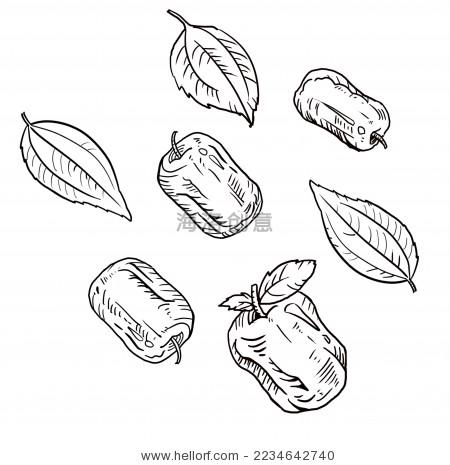 线稿,手绘插画