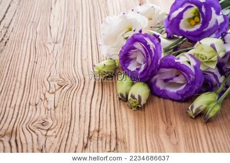 洋桔梗 鲜花 紫色 木板 木纹-背景/素材,自然-海洛()