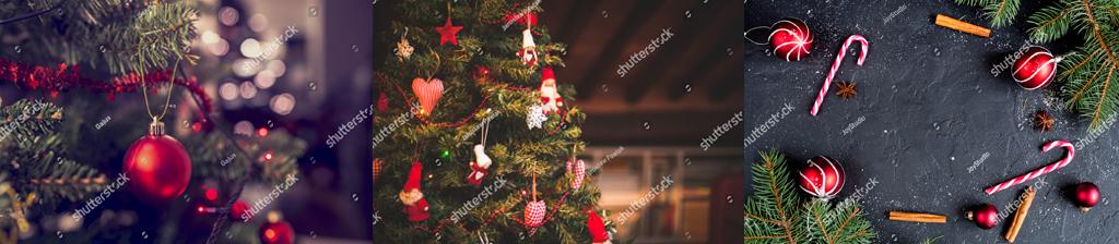 圣诞.jpg